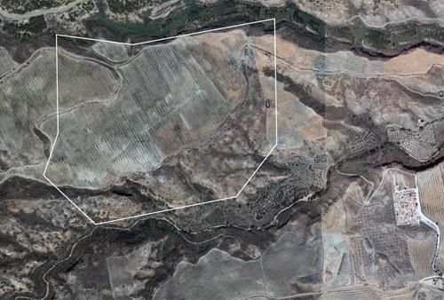 Necrópolis megalítica de Fonelas
