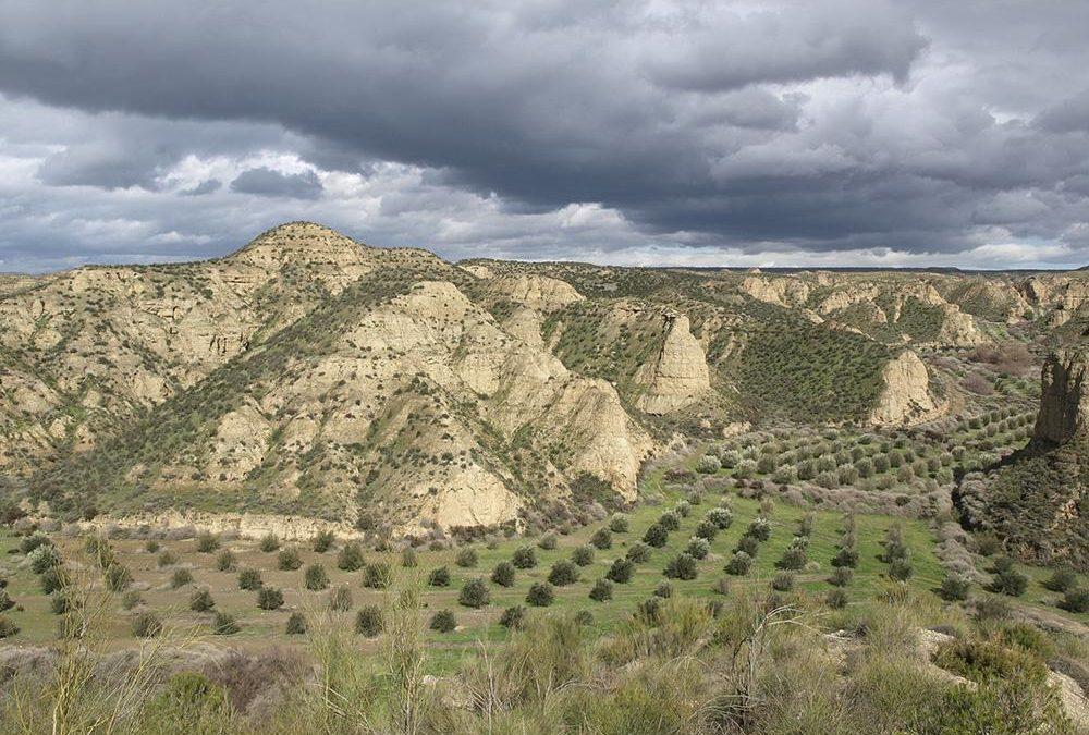 Cerro del Gallo