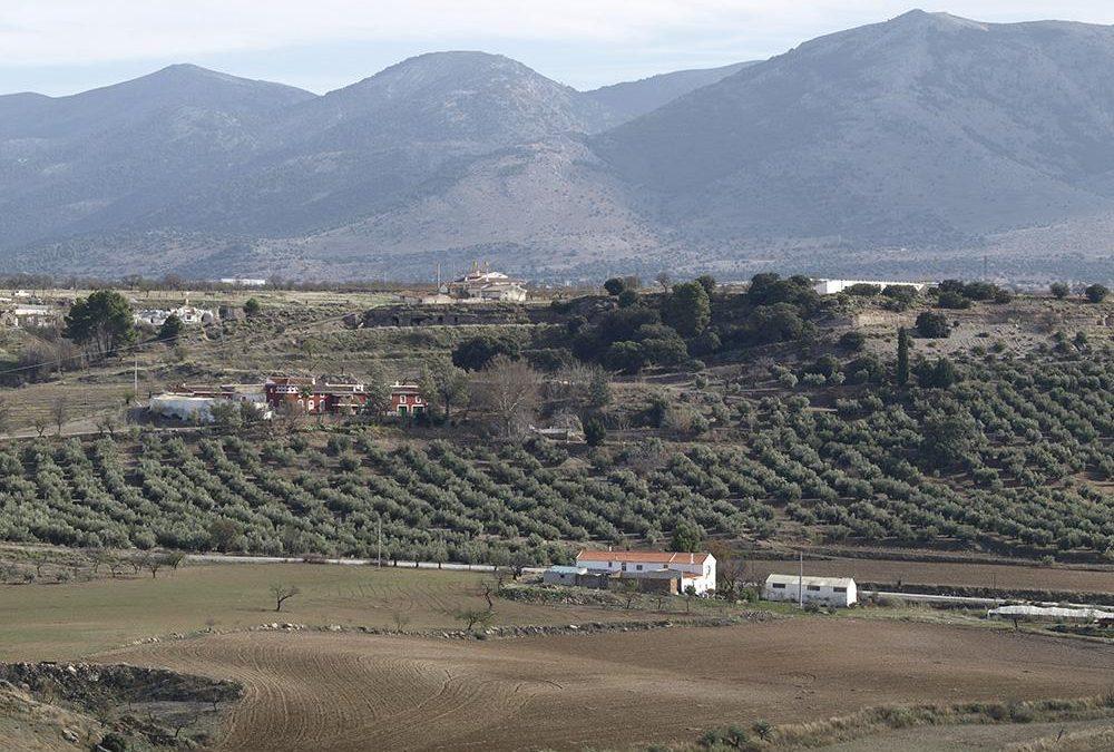 Cortijo Colorao