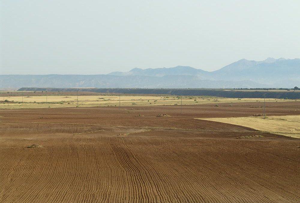Llano del Cerrillo de las Liebres