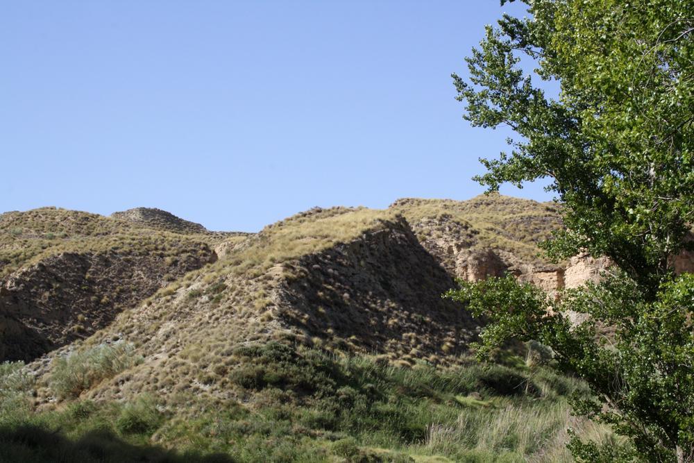 Cerro del Culantrillo
