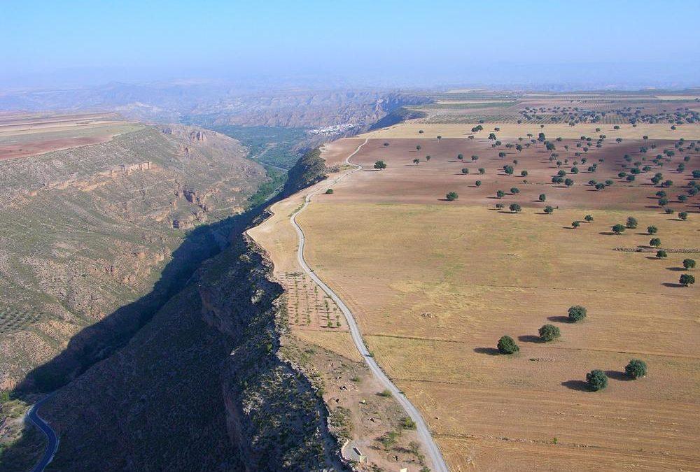 Llano de los Olivares