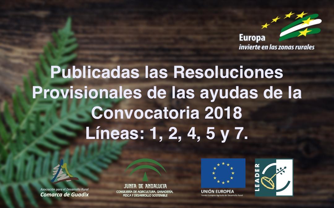 Publicadas las Resoluciones Provisionales de las ayudas de la Convocatoria 2018 Líneas: 1, 2, 4, 5 y 7.
