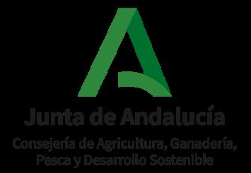 Publicada la resolución provisional de las líneas de ayuda 3 y 6 (Convocatoria 2018). Plazo establecido para el trámite de audiencia: 10-23 de septiembre de 2020.
