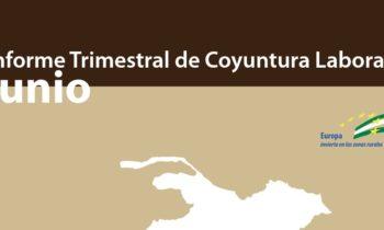 Informe trimestral de coyuntura laboral de la Comarca de Guadix