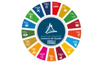 Resolución de la DGIICA, por la que se establece el plazo de ejecución de las ayudas de la submedida 19.2 del programa de desarrollo rural de Andalucía 2014-2020.