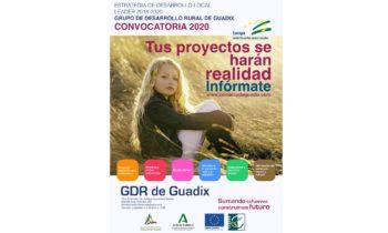 CONVOCATORIA DE AYUDAS 2020 Estrategia de Desarrollo Local Leader 2016-2020 Comarca de Guadix