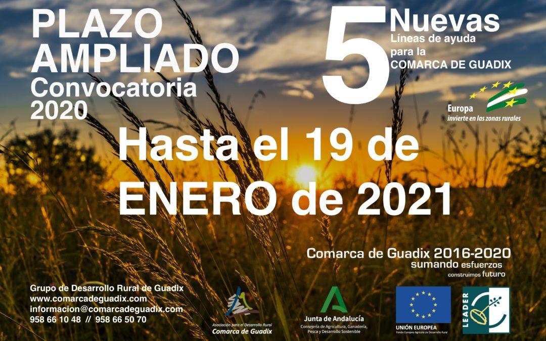 AMPLIADO EL PLAZO PARA LA CONVOCATORIA DE AYUDAS 2020 EDL Leader 2016-2020 Comarca de Guadix