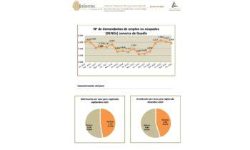 """""""Informe de empleo en la Comarca de Guadix"""""""
