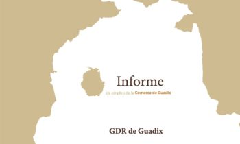 Informe trimestral de coyuntura laboral de la Comarca de Guadix. 1er Trimestre 2021.