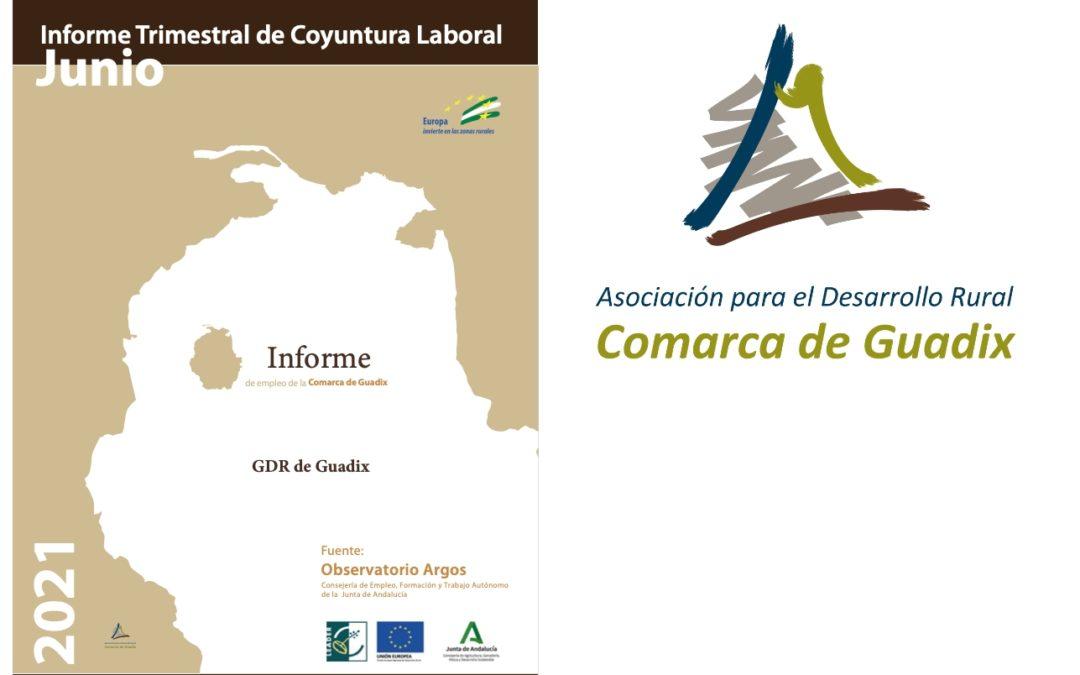 INFORME TRIMESTRAL DE COYUNTURA LABORAL DE LA COMARCA DE GUADIX. II Trimestre 2021.