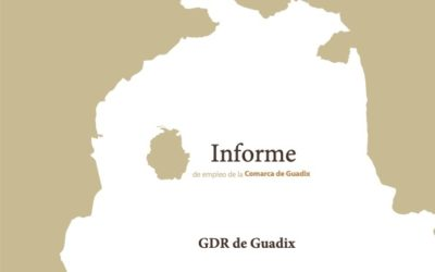 Informe trimestral de coyuntura laboral de la Comarca de Guadix. Tercer trimestre de 2021 (datos actualizados a septiembre).